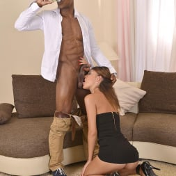 Alexis Brill in 'DDF' Mistress Of His Rod (Thumbnail 6)