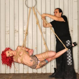 Becky Holt in 'DDF' Tats And Ropes (Thumbnail 8)