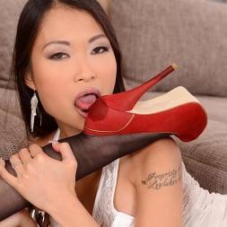 Jessyka Swan in 'DDF' Stocking Feet Sirens (Thumbnail 3)