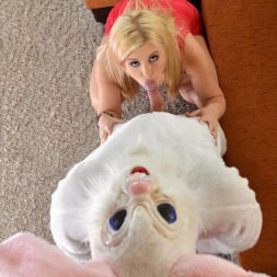 Charlyse Bella in 'DDF' A Visit With Mr. Rabbit (Thumbnail 7)