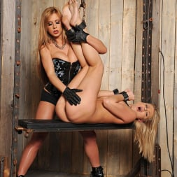 Lucy Heart in 'DDF' Stimulating Activity (Thumbnail 8)