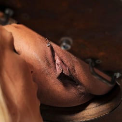 Lucy Heart in 'DDF' Stimulating Activity (Thumbnail 14)