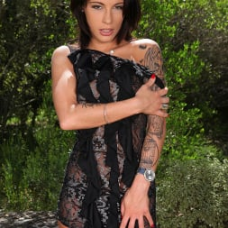 Nikita Bellucci in 'DDF' Tryst With Tattoos (Thumbnail 2)