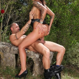 Nikita Bellucci in 'DDF' Tryst With Tattoos (Thumbnail 11)